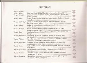 ĆWICZENIA ORTOGRAFICZNE I MATEMATYCZNE DLA MŁODSZYCH DZIECI -57